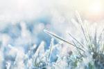 Yoga für Kinder - Winter